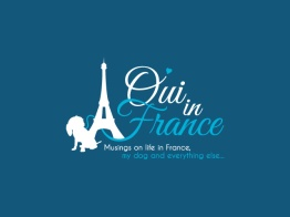 Oui in France Logo Design